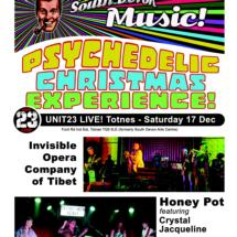 Psychedelic Christmas Experience poster